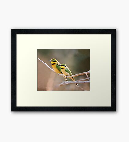 Will You Bee Mine Framed Print