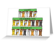 Cats celebrating birthdays on December 14th Greeting Card