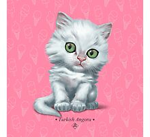 Cataclysm - Turkish Angora Kitten - Ice Cream Pink Photographic Print
