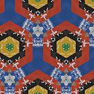 Geometric Experience by Marie Sharp