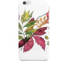 Autumn leaves, watercolor illustration iPhone Case/Skin