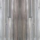 Gray Wood  by Detnecs2013