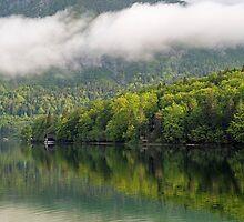 Morning on Lake Bohinj by Nick Jenkins