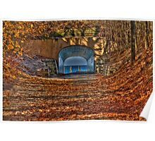 Tunnel Park in Autumn Poster
