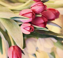 Vintage Tulips by micklyn