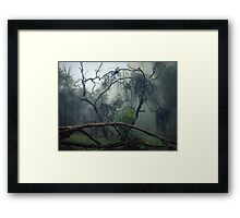 Loose In The Top Paddock Framed Print