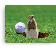 Gopher Golf Canvas Print