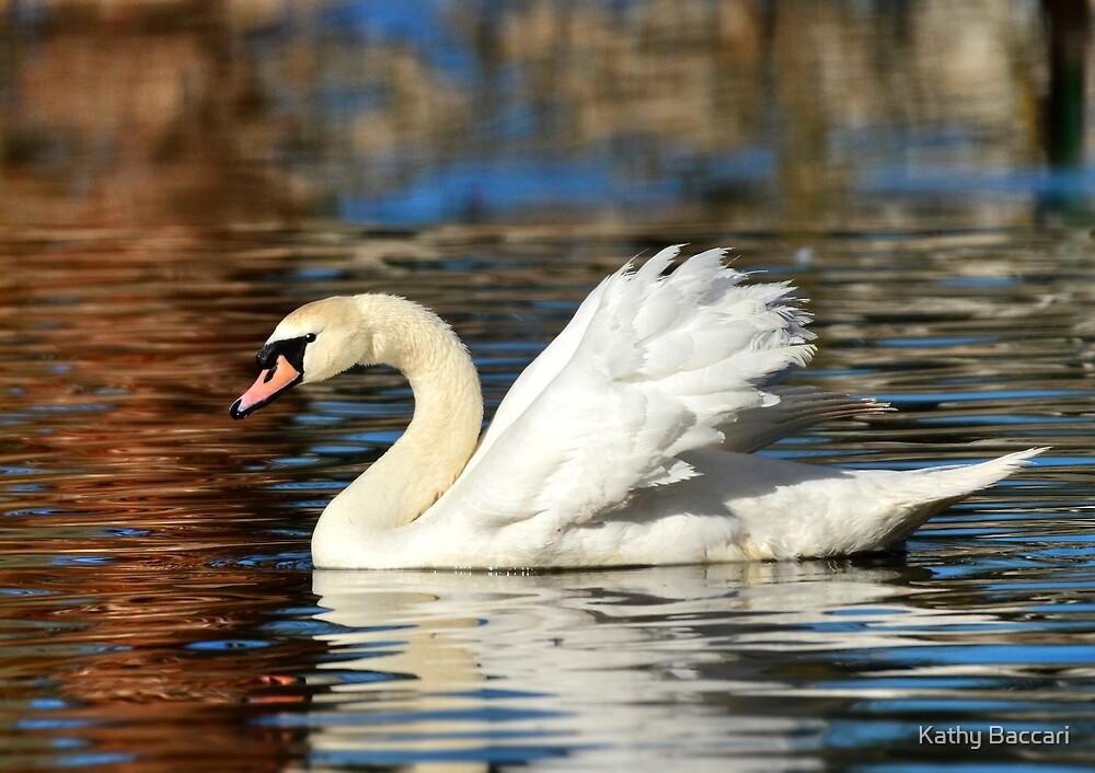 Graceful Swan by Kathy Baccari