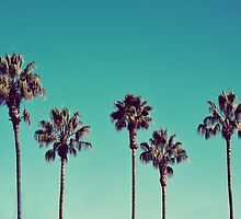 California Palm Trees by LawsonImages