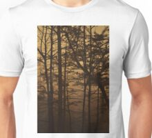 Monument Lake, As Is T-Shirt