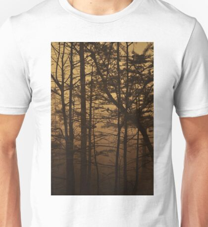 Monument Lake, As Is Unisex T-Shirt