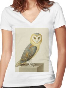 Joseph Nicolas Robert-Fleury - A Barn Owl. Bird painting: cute fowl, fly, wings, lucky, pets, wild life, animal, owls, little small, owl, nature Women's Fitted V-Neck T-Shirt