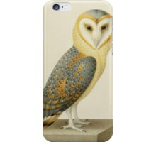 Joseph Nicolas Robert-Fleury - A Barn Owl. Bird painting: cute fowl, fly, wings, lucky, pets, wild life, animal, owls, little small, owl, nature iPhone Case/Skin