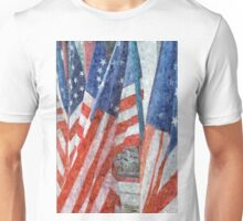 Many Stars and Stripes Unisex T-Shirt