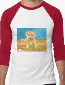 Boxer Pup Men's Baseball ¾ T-Shirt