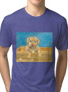 Boxer Pup Tri-blend T-Shirt