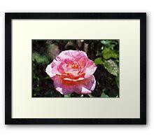 Quite Rosey Framed Print