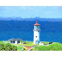 Kilauea Point  by Lena Owens Photographic Print