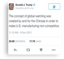 Donald Trump- Global Warming  Canvas Print