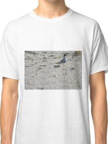 Mama and Baby Tern, As Is Classic T-Shirt