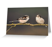 Two Little Tweets Greeting Card