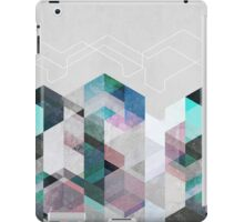 Nordic Combination 23 iPad Case/Skin