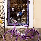 Lavender Bicycle by Rae Tucker