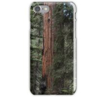 Forest Giants iPhone Case/Skin