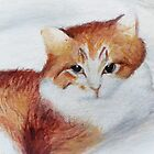 Mr Paper the cat by paintingsbycr10