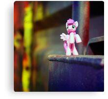pony Canvas Print