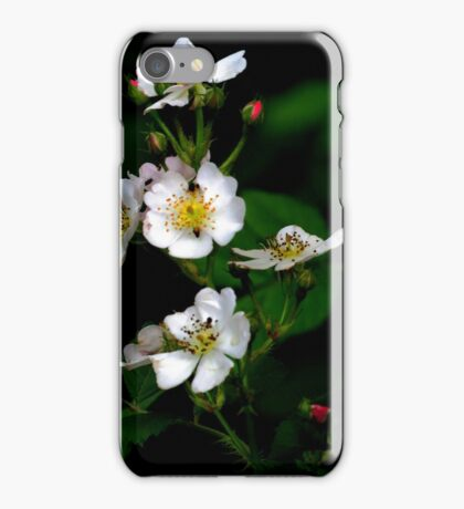 Flora - hawthorn blossoms (2016) iPhone Case/Skin