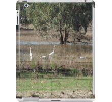 Birds in flood waters iPad Case/Skin