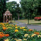 Launceston City Park January 2014 by Brett Rogers