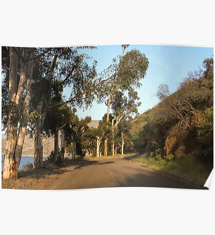 Approaching El Capitan Reservoir, San Diego County, California, 10 Poster