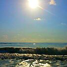 Oh Sunny Day by Dana Yoachum