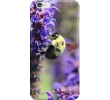 Bee Collecting Pollen From Purple Flower iPhone Case/Skin
