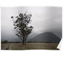 Landscape - Mountains - Field - Trees  Poster