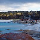 Bay of Fires by jayview