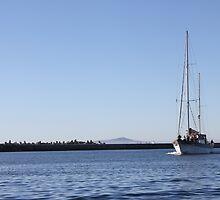Blue Water Boat by sloganart