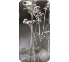 Australian Nature 1. iPhone Case/Skin