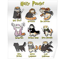 Hairy Pawter Meow 9 Characters Poster