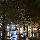 Southbank fairy lights by Peter Krause