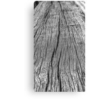 Wood at the Barrack's Canvas Print