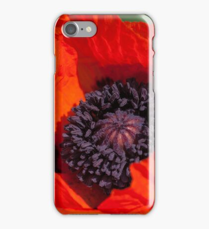 beautiful poppy in the sunlight iPhone Case/Skin
