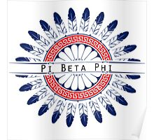 Pi Beta Phi - Feathers Poster