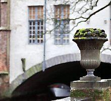 Belgian landscape by mrivserg