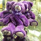 *Lovely Purple Teddy Bears* by EdsMum
