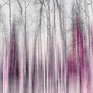 Untitled by Priska Wettstein