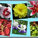 Memories of Summer Floral Collage by BlueMoonRose