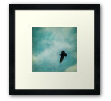 Cloudy spring sky with a soaring raven  Framed Print